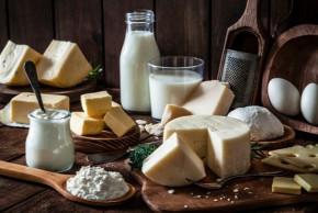 Mléko a mléčné výrobky v těhotenství