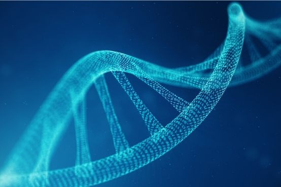 DNA je jenom část celého příběhu