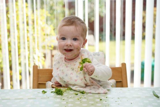 Imunita kojenců a zásady správné výživy po 6. měsíci věku