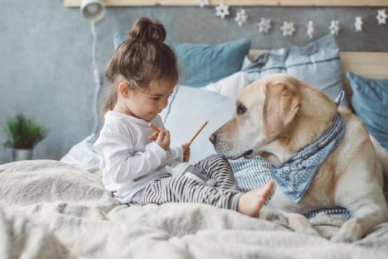 Imunita batolat a zásady správné výživy po 1. roce věku